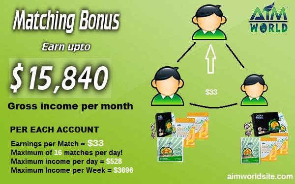 Earn 528 USD per day