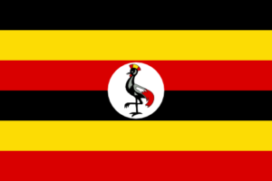 AIM Global kampala Uganda